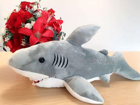 公司毛绒鲨鱼玩偶转让